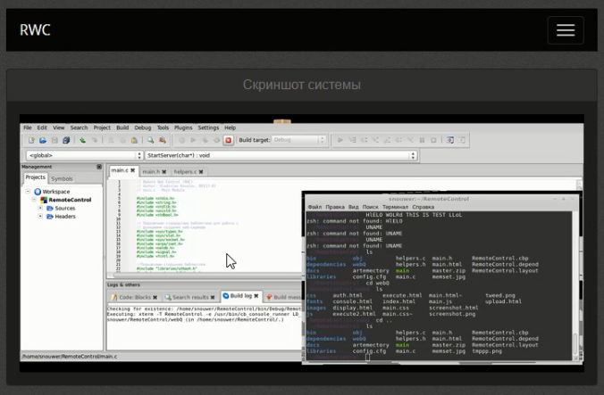 Скриншот системы